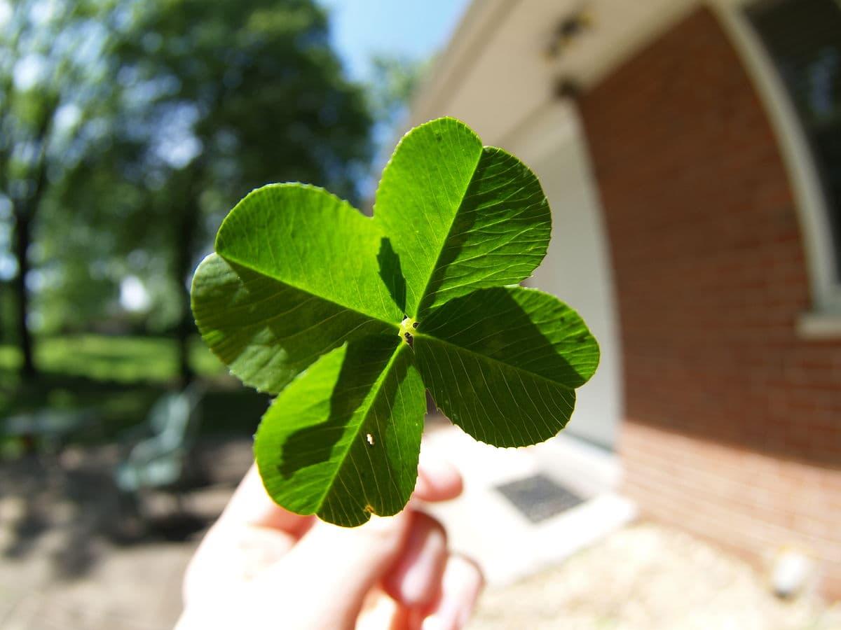 Как навлечь на себя удачу